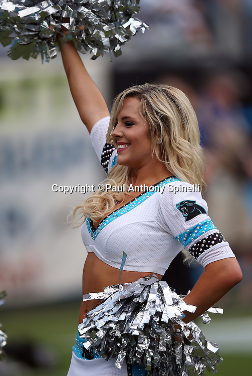 A Carolina Panthers cheerleader waves her pom poms as she cheers during the Carolina Panthers 2015 NFL week 2 regular season football game against the Houston Texans on Sunday, Sept. 20, 2015 in Charlotte, N.C. The Panthers won the game 24-17. (©Paul Anthony Spinelli)