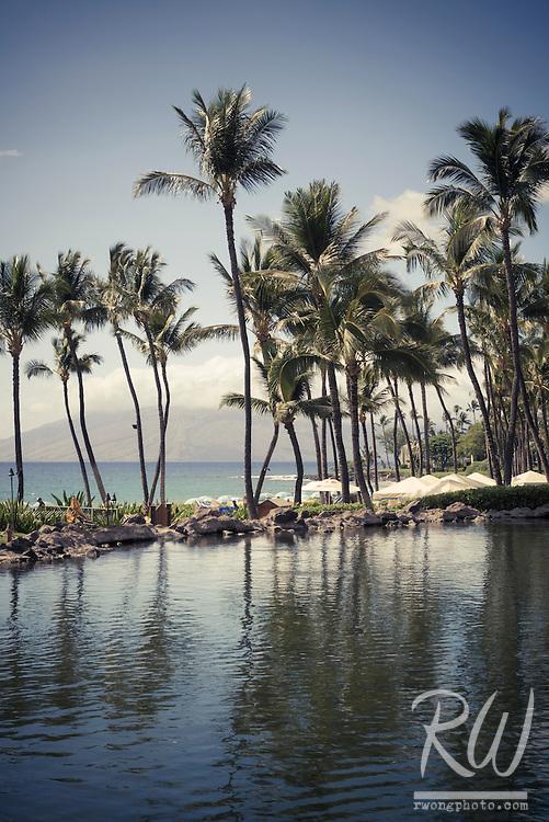 Lagoon and Palm Trees at Grand Wailea Resort, Maui, Hawaii