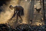 Boy in the Karonga area of Malawi uses bound plants to clean his yard in the late afternoon.