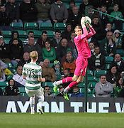 Dundee's Scott Bain clutches a cross -  Celtic v Dundee - SPFL Premiership at Celtic Park<br /> <br /> <br />  - © David Young - www.davidyoungphoto.co.uk - email: davidyoungphoto@gmail.com