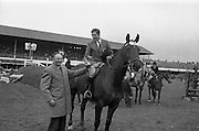 "08/05/1964<br /> 05/08/1964<br /> 08 May 1964<br /> R.D.S. Spring Show Ballsbridge Dublin, Championship Showjumping. Mr. H. Barrington-Jellett (left), President of the R.D.S. presenting the Schwepps Cup to Mr. Seamus Hayes on ""Goodbye"", winner of Championship Competition ""O"" at the Dublin Spring Show. ""Goodbye"" was owned by Mr. Joseph J. McGrath."