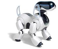 Aibo robotic pet
