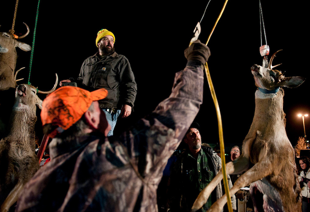 Lauren Justice | MLive.com<br /> <br /> A deer is raised to hang in a row of other deer on display. Hunters and spectators gather at Madden's Lounge Thursday night where deer are put on display after the first day of firearm deer hunting season.