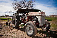 Old Ford tractor sitting in horse pasture at the Spot-O-Faith farm.  Fine art landscape photography by Michael Kloth.