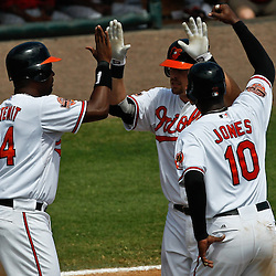 March 24, 2012; Sarasota, FL, USA; Baltimore Orioles catcher Matt Wieters (32) celebrates with teammates Adam Jones (10) and Wilson Betemit (24) after hitting a three run homerun during the bottom of the third inning of a spring training game against the Washington Nationals at Ed Smith Stadium.  Mandatory Credit: Derick E. Hingle-US PRESSWIRE