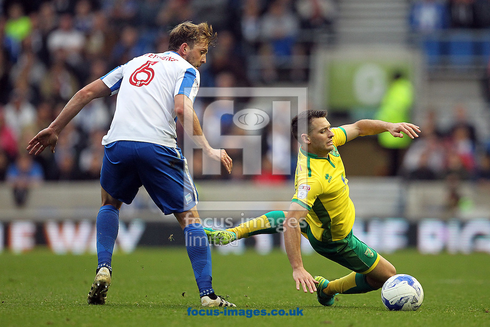 Dale Stephens of Brighton &amp; Hove Albion and Wes Hoolahan of Norwich in action during the Sky Bet Championship match at the American Express Community Stadium, Brighton and Hove<br /> Picture by Paul Chesterton/Focus Images Ltd +44 7904 640267<br /> 29/10/2016