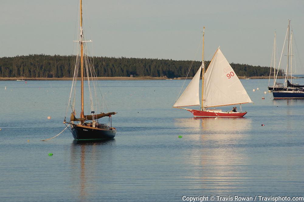 Sailboats in Southwest Harbor, Maine.