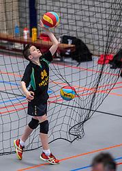 18-02-2017 NED:  Halve Finale NJOK, Houten<br /> In sporthal de kruisboog worden de wedstrijden gespeeld door CMV meisjes en jongens / Prima Donna Kaas Huizen