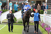 HAPPY POWER (4) ridden by Silvestre De Sousa and trained by Andrew Balding enter the Winners Enclosure after winning The Listed equinITy Technology Ganton Stakes over 1m (£50,000)    during the Midsummer Raceday held at York Racecourse, York, United Kingdom on 14 June 2019.