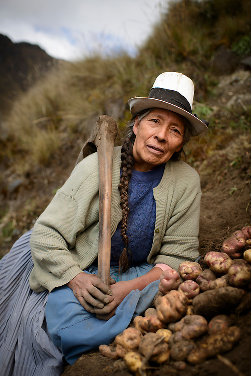 "Potato Harvest in the high Andes of Peru withSeñora Fausta ""Uva"" Callupe."
