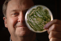 Gary Payne loks at a petri dish of mold aflatoxin hishis Parners 3 lab on Centennial Campus.