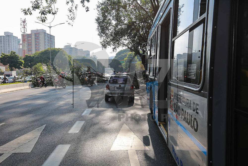 SÃO PAULO, SP, 11.03.2016 - ACIDENTE-SP - Uma árvore de grande porte cai e atinge tres motociclista na avenida 23 de Maio próximo ao viaduto Tutóia no bairro do Pairaíso na região sul de São Paulo na manha desta segunda-feira, 11.(Foto: William Volcov/Brazil Photo Press)