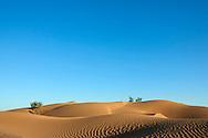 Sahara desert sand dunes with clear blue sky at M'hamid, Morocco.