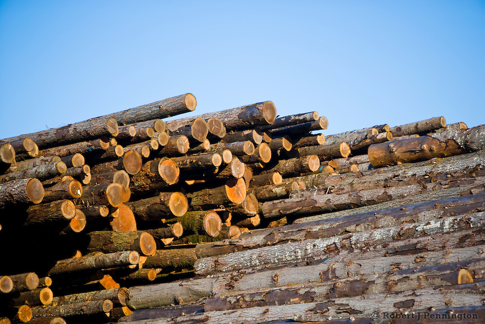 A stack of logs waits to be turned into lumber at a sawmill operation in the Pacific Northwest.