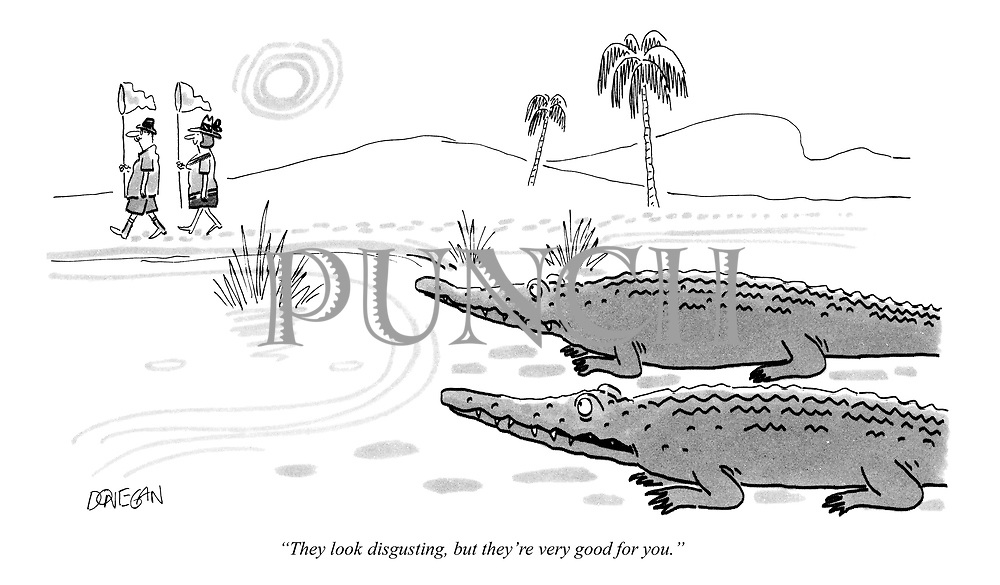 """They look disgusting, but they're very good for you."" (cartoon showing two hungry crocodiles watching a couple of tourists on a safari holiday)"