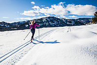 A middle aged woman on the cross country trails in the Methow Valley up near Sun Mountain Lodge (Winthrop / Twisp, Washington, area, USA).