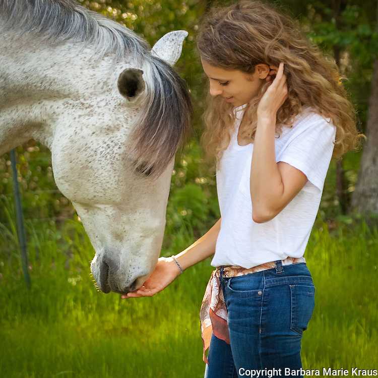 A beautiful young woman lovingly touches her Andalusian horse's nose.   She is wearing jeans and and a white tee shirt.