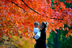 60642800  <br />  A woman holding her baby stands under a maple tree on a late autumn day in the Central Park in New York, the United States, on Sunday, 27th October 2013. Picture by  imago / i-Images.<br /> UK ONLY