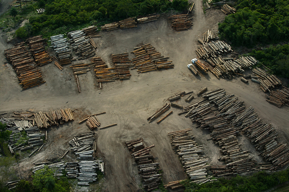 Dec. 3, 2003: Logs in a sorting yard near Parana do Uruara in the Brazilian Amazon. ©Daniel Beltra