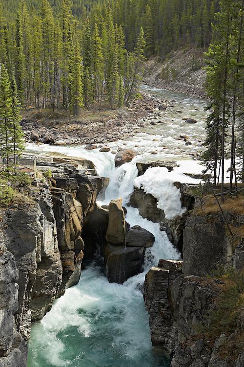 An overlook allows tourists to view Sunwapta River and Sunwapta Falls in Jasper National Park, Alberta, Canada.