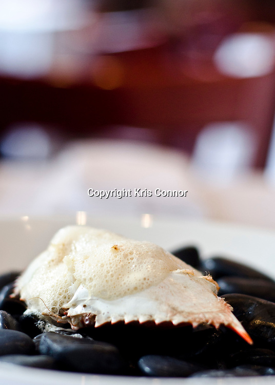 Crab with Old Bay Air, Out of the Shell at American Eats Tavern in Washington DC. Photo by Kris Connor