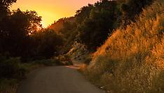 Gorgeous Light on the Mountain