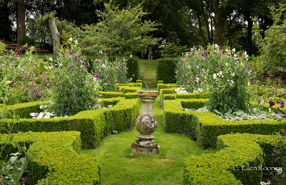 A stone urn surrounded by Buxus sempervirens and Lathyrys odoratus (sweet pea) in the Parterre at  Broughton Grange, Banbury, Oxfordshire, UK