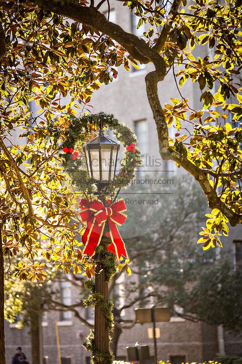 Christmas decorations on a gas lamp in Savannah, GA.
