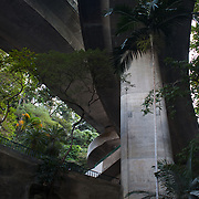 Roads seen from below. Hong Kong is build on a hill side and roads cross in different levels with trees and shrubs amongst them.  7 million people live on 1,104km square, making it Hong Kong the most vertical city in the world.