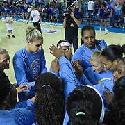 Chicago Sky Forward Elena Delle Donne (11) and her teammates huddle together prior to a WNBA preseason basketball game between the Chicago Sky and the New York Liberty Friday, May. 22, 2015 at The Bob Carpenter Sports Convocation Center in Newark, DEL