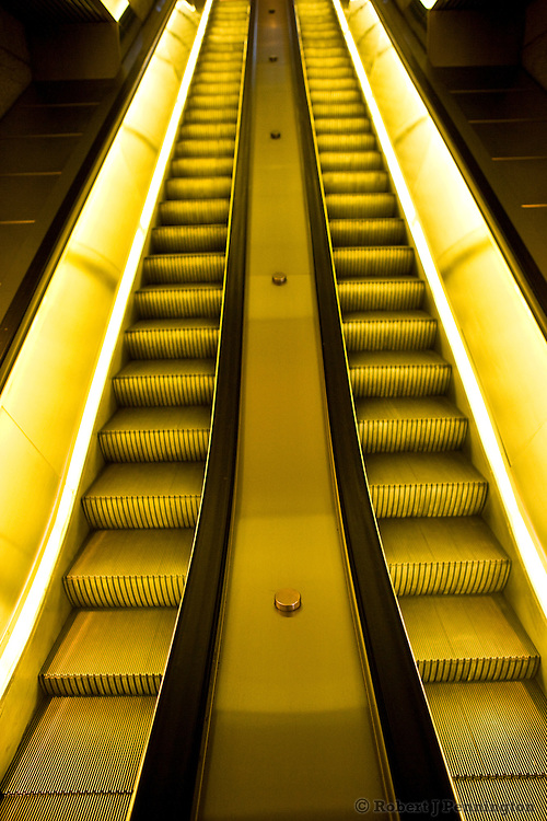 Artificial lights glow gold and yellow along two empty escalator with foreground in focus.