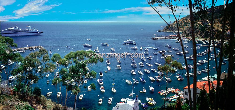 Santa Catalina, Island, Avalon Harbor, CGI Backgrounds, ,Beautiful Background