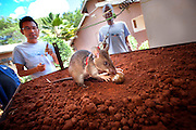 Heroic Rats Sniff Out Landmines In Africa, Could Save 1,000s Of People Worldwide<br /> <br /> Bomb-sniffing rats could save thousands around the world from death and dismemberment every year. APOPO, a Belgian NGO that has been training giant African pouched rats to detect landmines, thinks it can make this dream a reality. In operation since 1997, their rats can effectively search 200 square meters in 20 minutes, versus the 25 operational hours it would take humans with mine detectors. There was a global average of 9 mine-related casualties per day in 2013.<br /> No HeroRats have died in the line of duty. An average mine requires something weighing 5kg (11lb) or more to detonate, and the heaviest operational male rats do not exceed 1.5kg (3.3lb). Furthermore, sunscreen is applied to the rats&rsquo; ears to prevent skin-cancer. Once a rat is no longer keen to work, or is too old, it is retired and permitted to live out the rest of its natural life.<br /> &copy;apopo/Exclusivepix Media