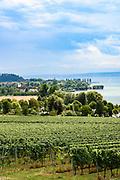 Blick auf den Bodensee, Überlinger See bei Maurach/Birnau, Baden-Württemberg, Deutschland