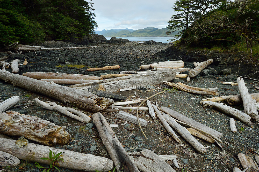 Driftwood and other debris on the rocky shore of the island of SGang Gwaay or Anthony Island, Haida Gwaii, British Columbia.