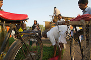 A village man brings his grain to the market via bicycle.