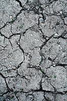 Reportage sul comune di Alessano per il progetto propugliaphoto..Terra arsa a causa della siccità..Macurano è un villaggio rupestre considerato un luogo di scambio e commercio, simbolo della cultura dell'olio per la presenza ad oggi di alcune tracce nelle grotte e di frantoi funzionanti nella zona. L'insediamento è caratterizzato da una serie di grotte sia naturali che scavate nel calcare, cisterne per la raccolta dell'acqua, sistemi di canalizzazione che scendono da Montesardo, viottoli, scalette e vie più larghe con antiche tracce di carri..Si ritiene che in questo sito, un vero e proprio centro abitato ben organizzato distante circa quattro km dalla costa, i monaci basiliani scappati dall'oriente in seguito alla lotta iconoclasta, trovarono rifugio e si dedicarono all'agricoltura..L'area del villaggio rupestre fu sicuramente sfruttata in epoche successive, lo prova l'esistenza di ben tre masserie di cui una fortificata e i resti di una serie di costruzioni che fanno parte dei numerosi esempi di architettura rurale presenti in questo territorio. .Il complesso masserizio, denominato Macurano, edificato probabilmente nel Cinquecento include la Masseria di Santa Lucia e la cappella di Santo Stefano. La Masseria è dominata dal nucleo originario, ovvero dalla torre cinquecentesca coronata da beccatelli a sostegno del parapetto aggettante del terrazzo sommitale.