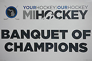 2014 MiHockey Banquet of Champions