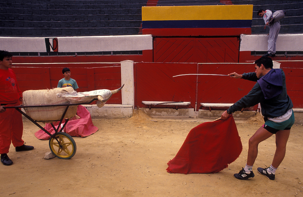 A dummy bull is presented to a trainee matador in Bogota's Plaza de Toros during a training session.