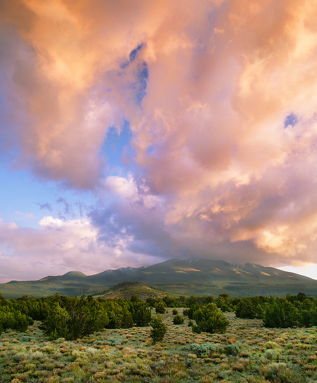 0142-1020B ~ Copyright:  George H. H. Huey ~ Evening clouds over the San Francisco Peaks, Kachina Peaks Wilderness Area, with pinyon-juniper forest in foreground.  Coconino National Forest, Arizona.