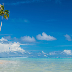 A woman stands in frot of a palmtree on Tereia Point, a beautiful stretch of sand, Maupiti, French-Polynesia.