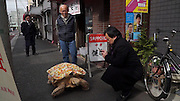 VIDEO AVAILABLE - JAPAN OUT<br />