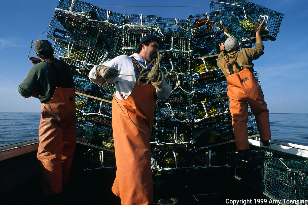 MONHEGAN ISLAND, MAINE - DECEMBER 03: Lobstermen work together to set their traps on trap day, December 3, 1999 off Monhegan Island, Maine. Monhegan Island, home to lobstermen and painters and a popular destination for tourists is twelve miles off the coast of Maine. Ringed by high, dark cliffs, its interior a mix of meadows, marsh and spruce groves, Monhegan is one of just 14 true island communities left off the coast of Maine. The island has a 65 permanent, year-round residents and the population grows to around 200 in the summer, with day-trippers adding several hundred more. (Photo by Amy Toensing) _________________________________________<br />