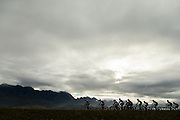 A line of riders during stage 4 of the 2014 Absa Cape Epic Mountain Bike stage race from The Oaks Estate in Greyton, South Africa on the 27 March 2014<br /> <br /> Photo by Greg Beadle/Cape Epic/SPORTZPICS