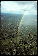 SHOWCASE: AMAZON
