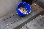 A bucket of smokers' cigaratte butts in a London back street alleyway.