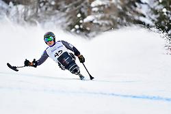 Downhill, PEDERSEN Jesper, LW11, NOR at the WPAS_2019 Alpine Skiing World Championships, Kranjska Gora, Slovenia