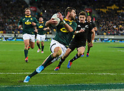 South Africa's Willie le Roux. All Black's v South Africa, Rugby Championship, Westpac Stadium, Wellington, New Zealand. Saturday, 27 July, 2019. Copyright photo: John Cowpland / www.photosport.nz