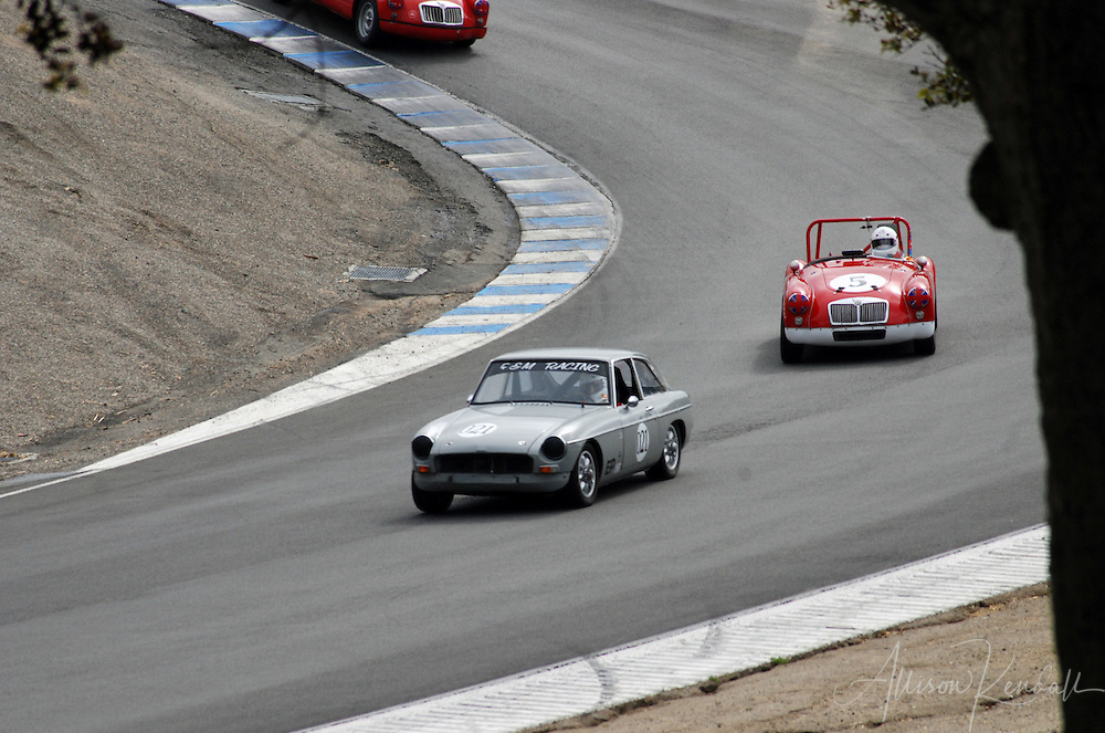 Vintage cars racing through the corkscrew of Laguna Seca during HMSA events