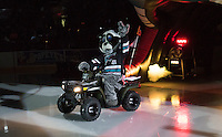 KELOWNA, CANADA - SEPTEMBER 25: Rocky Racoon, the mascot of the Kelowna Rockets enters the ice during the season home opener against the Kamloops Blazers on September 25, 2015 at Prospera Place in Kelowna, British Columbia, Canada.  (Photo by Marissa Baecker/Shoot the Breeze)  *** Local Caption *** Rocky Racoon;